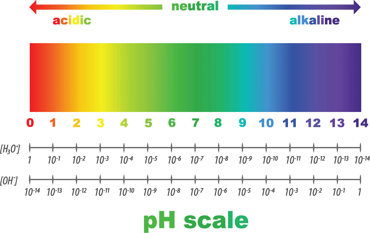 Is Drinking Water With A High Ph Good For You