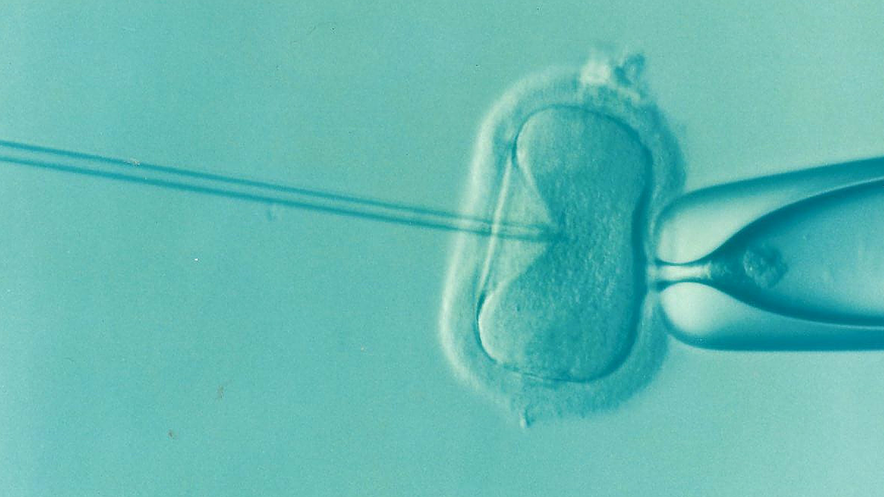 Coping with Infertility